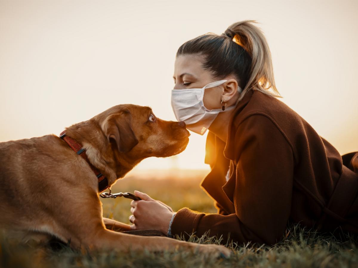 Kunnen huisdieren de mens besmetten als ze met besmette personen in contact zijn geweest?